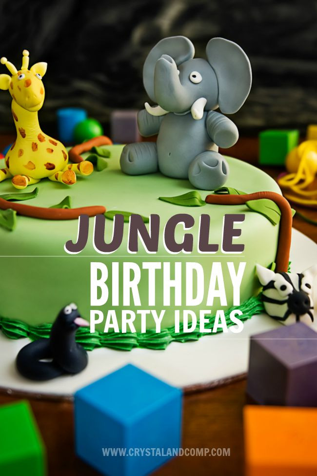 Animals For Kids Party  Jungle Birthday Party Ideas
