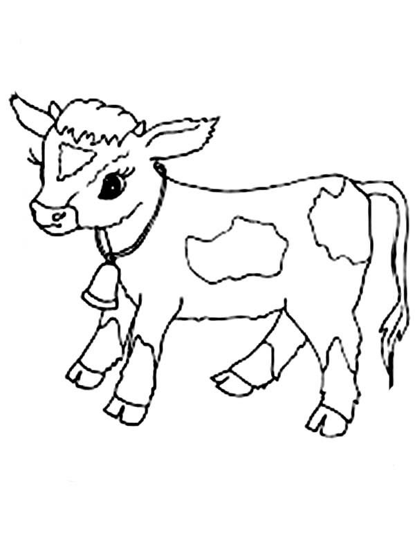 Baby Cow Coloring Pages  Baby Cow Coloring Page NetArt