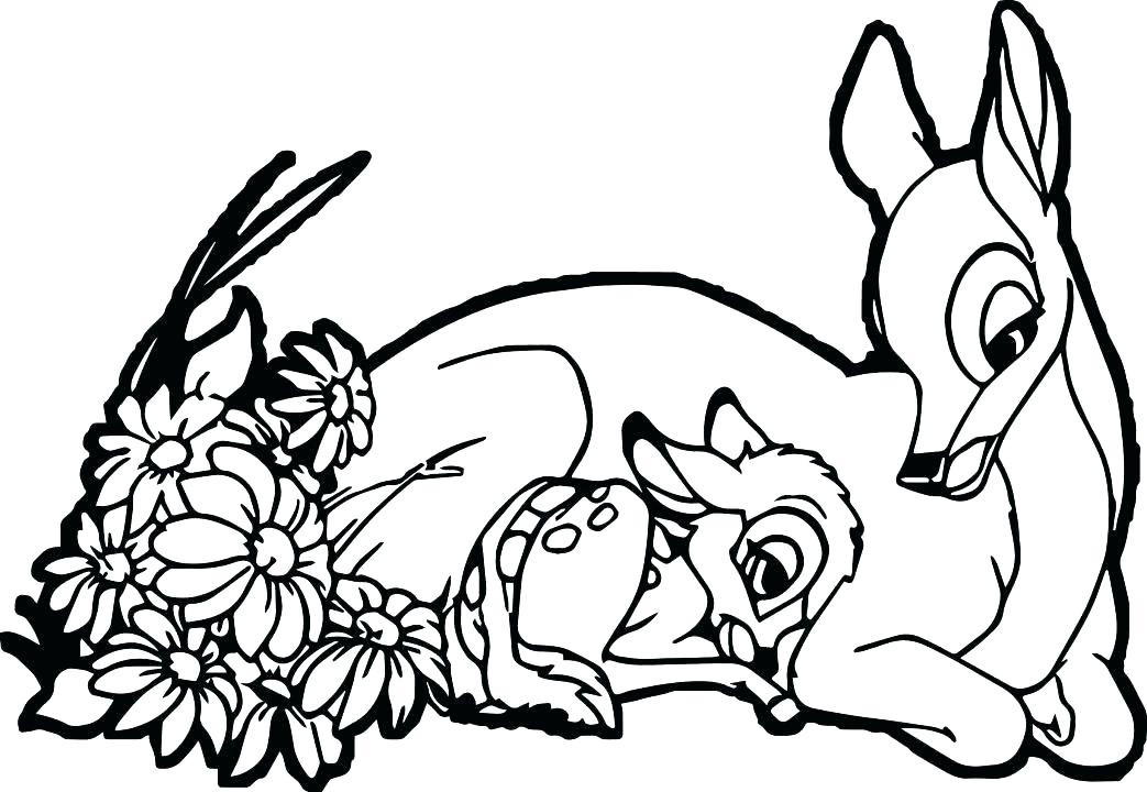 Baby Deer Coloring Page  Cute Coloring Pages Best Coloring Pages For Kids