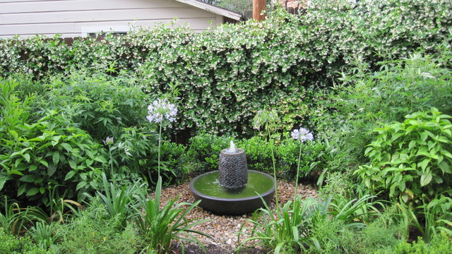 Backyard Bird Sanctuaries  Backyard bird sanctuary Traditional Landscape