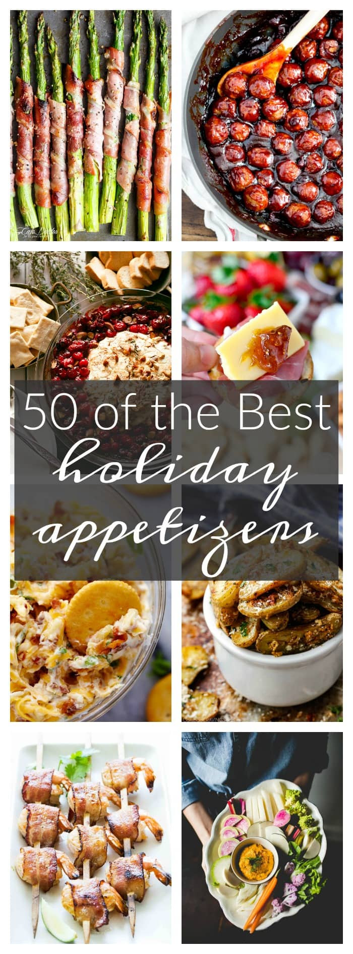 Best Christmas Party Appetizers  50 of the Best Appetizers for the Holidays A Dash of Sanity