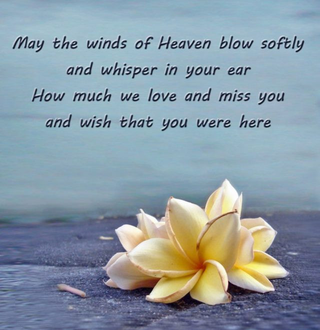 Birthday In Heaven Wishes  182 PROFOUND Happy Birthday in Heaven Quotes & Wishes