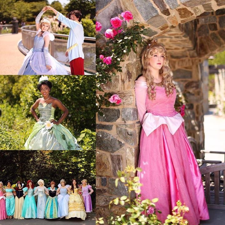 Birthday Party Richmond Va  Hire Dream Entertainers Princess Party in Richmond Virginia