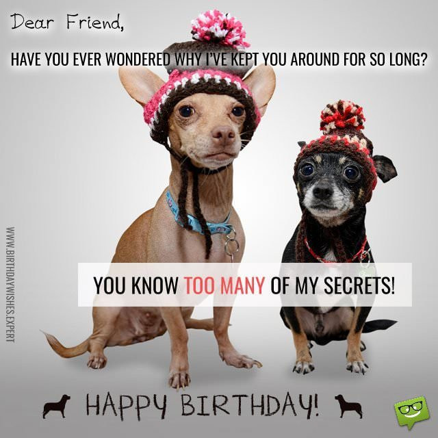 Birthday Wishes For Friend Funny  Funny Birthday Wishes for your Family & Friends