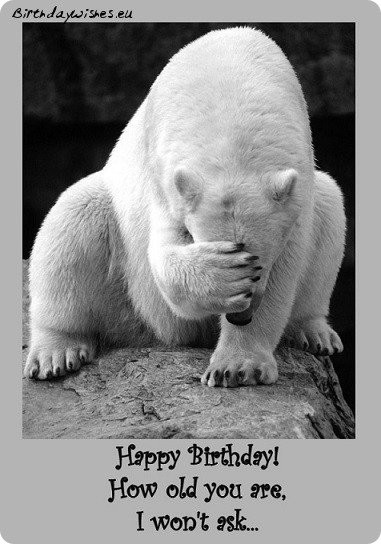 Birthday Wishes For Friend Funny  Top 50 Funny Birthday Wishes For Friend And Humorous