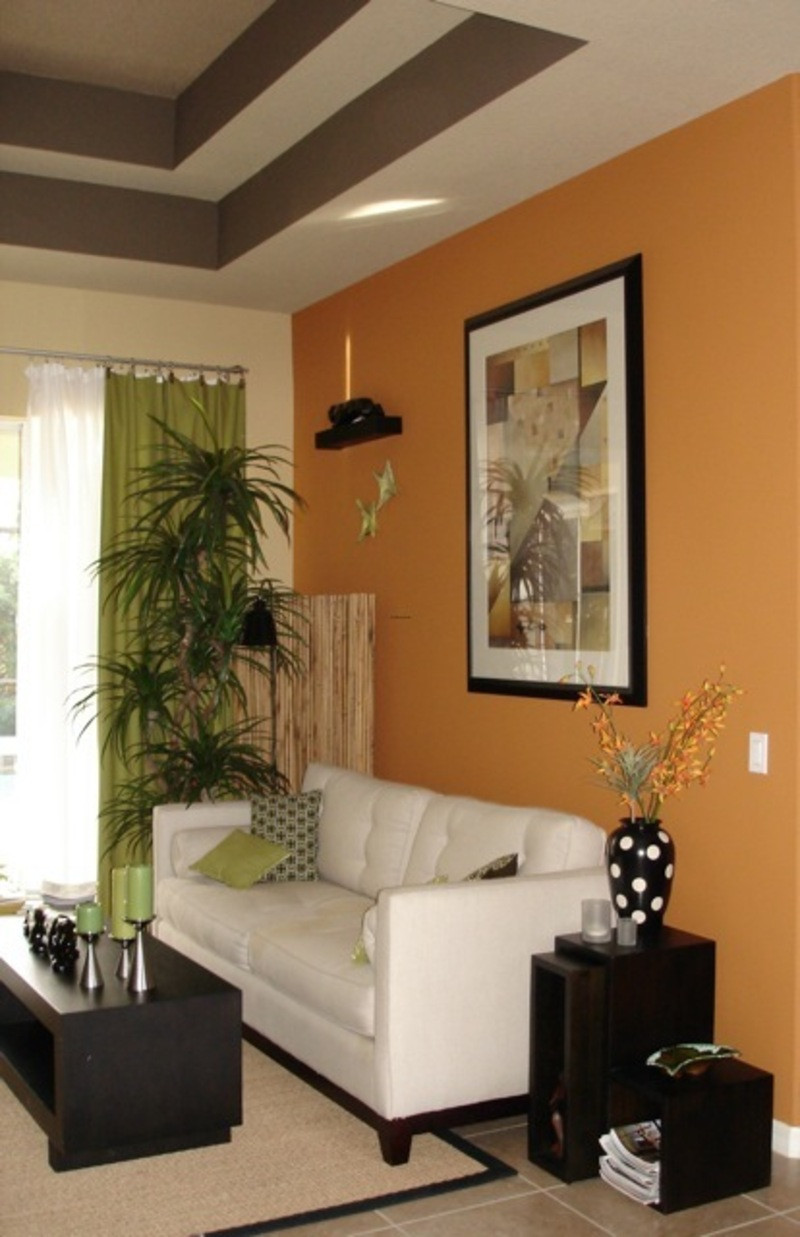 Brown Paint Living Room  Are the Living Room Paint Colors Really Important