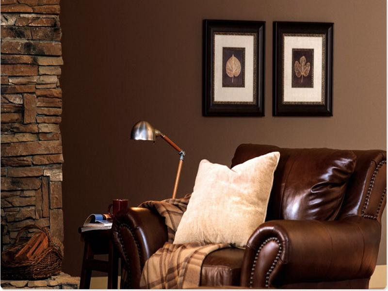 Brown Paint Living Room  Brown Paint Colors For Living Room Appealhome