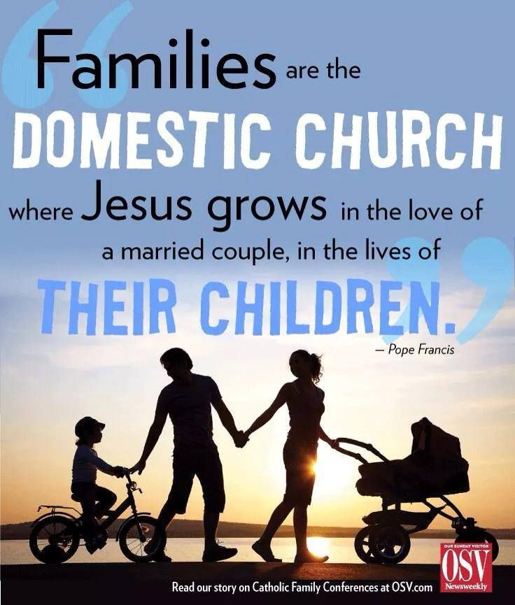 Catholic Quotes On Family  Pope Francis The Family The Domestic Church