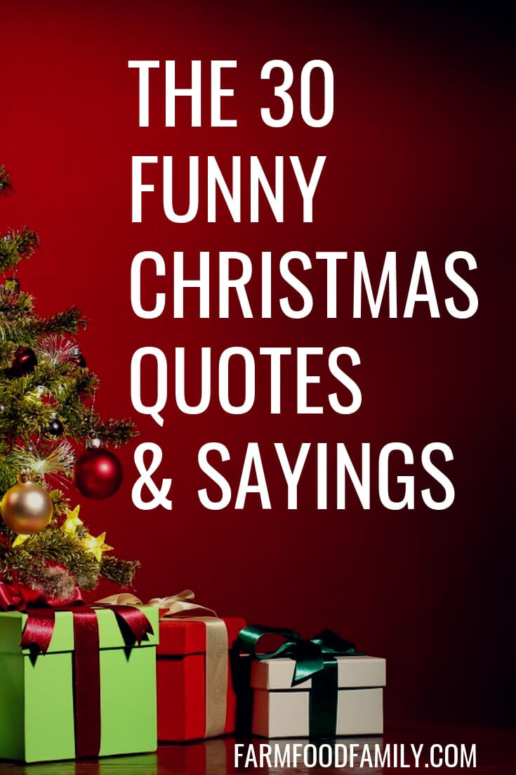 Christmas Picture Quotes  30 Funny Christmas Quotes & Sayings That Make You Laugh