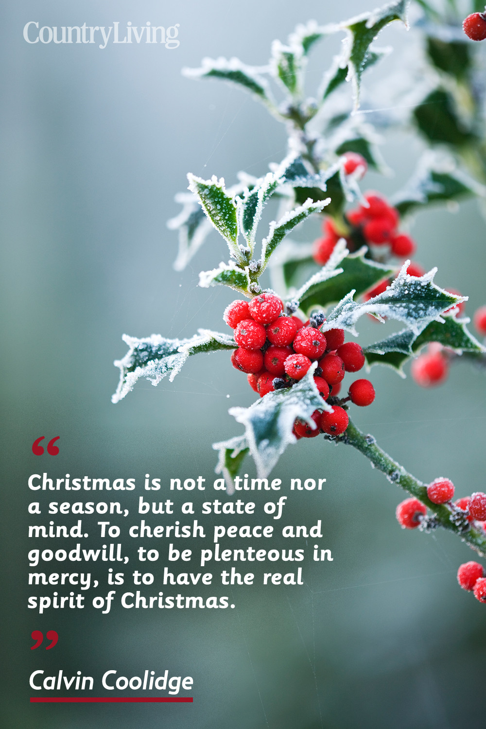 Christmas Picture Quotes  20 Merry Christmas Quotes Inspirational Holiday Sayings