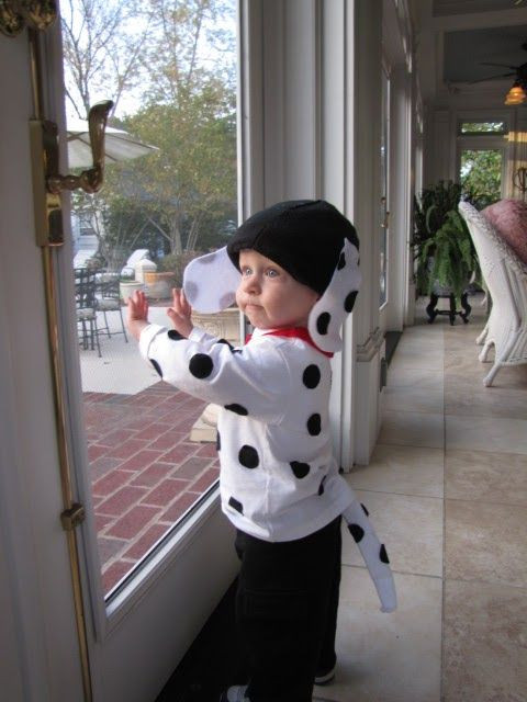 DIY Dog Costumes For Kids  little happy camper puppy love
