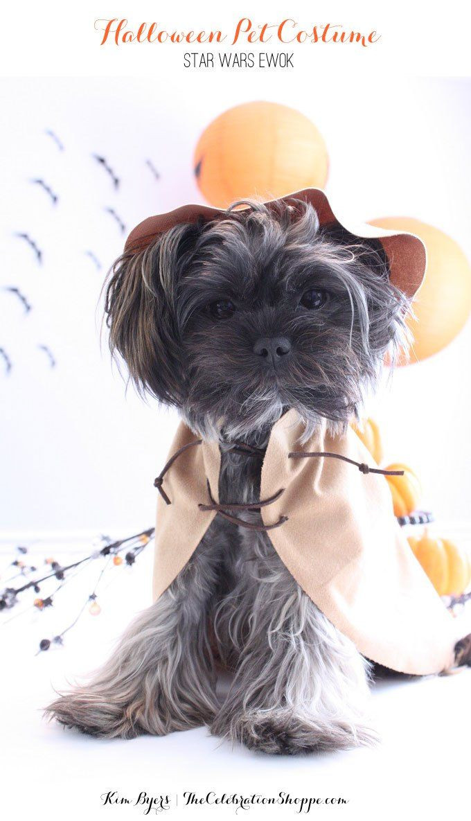 DIY Dog Ewok Costume  202 best Critters In Costume images on Pinterest