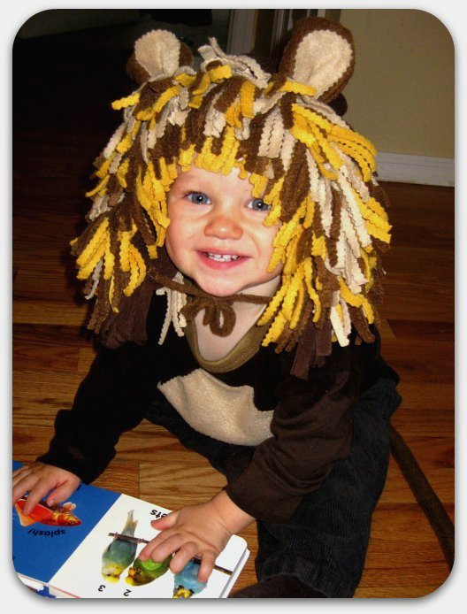 DIY Lion Costume For Toddler  TryItMom Super Easy DIY Baby Lion Costume