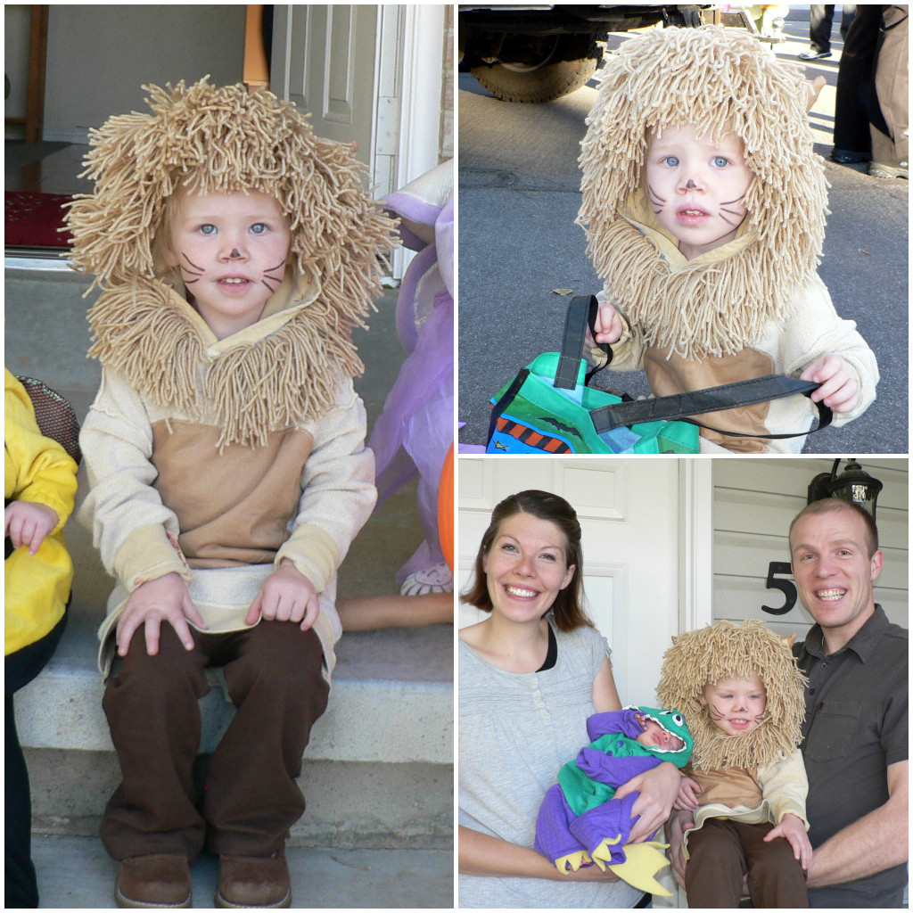 DIY Lion Costume For Toddler  Homemade Halloween Costumes for Kids and Families Bless