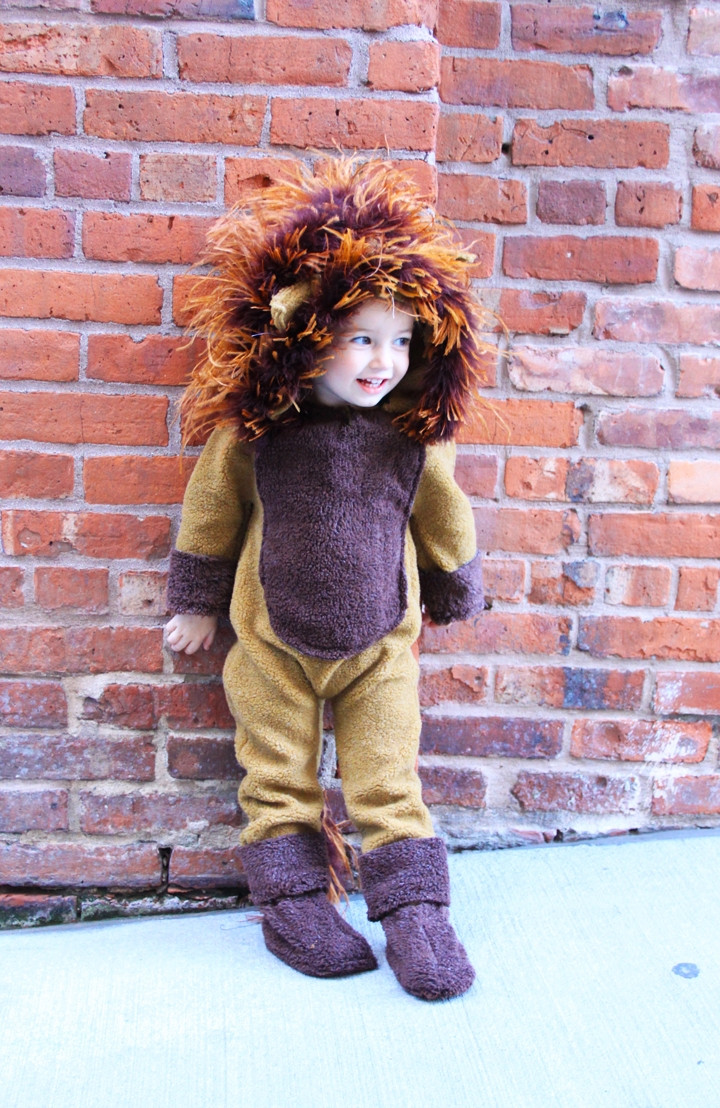 DIY Lion Costume For Toddler  Craftionary