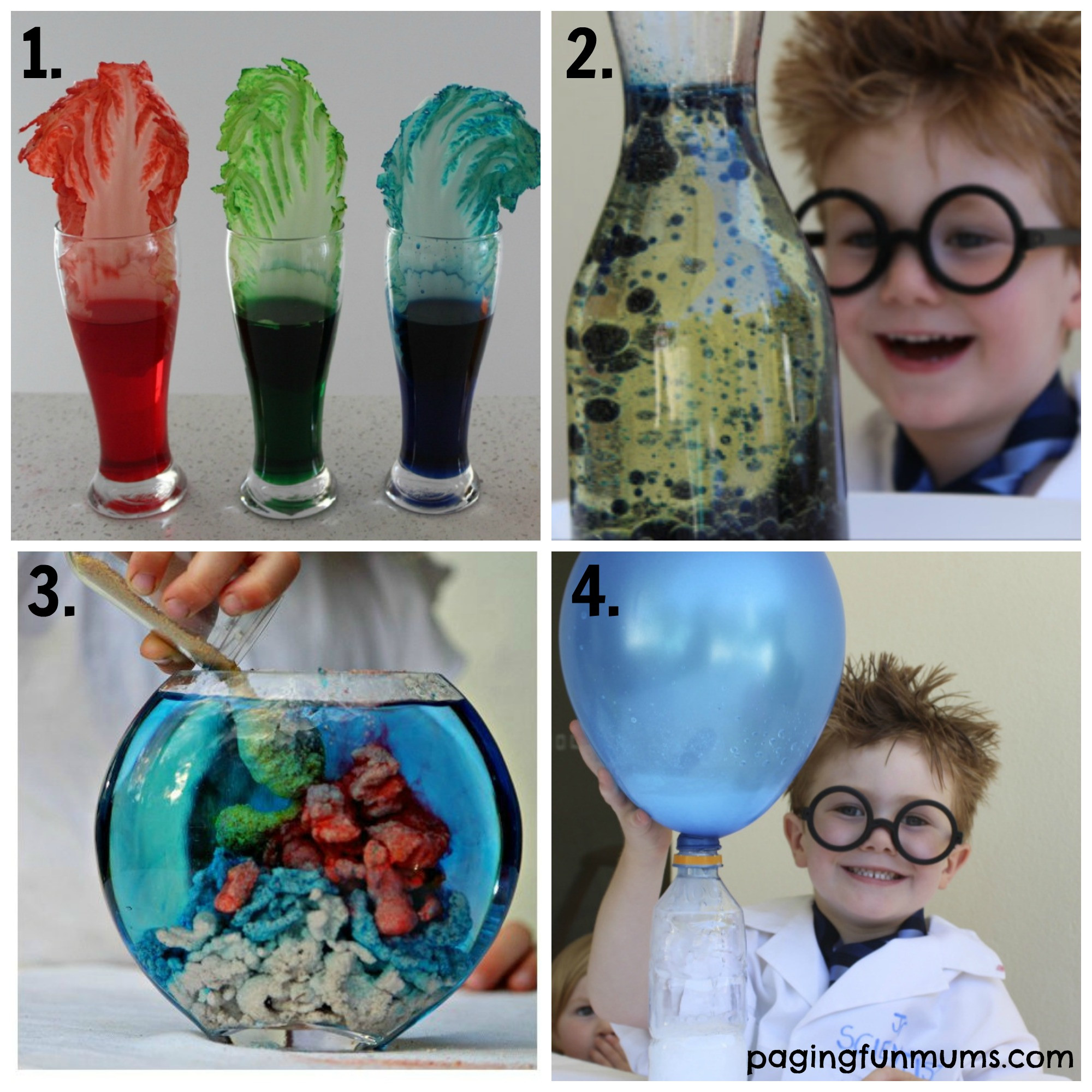 Fun Kids Projects  21 Fun Science Experiments for Kids 1 4 Paging Fun Mums