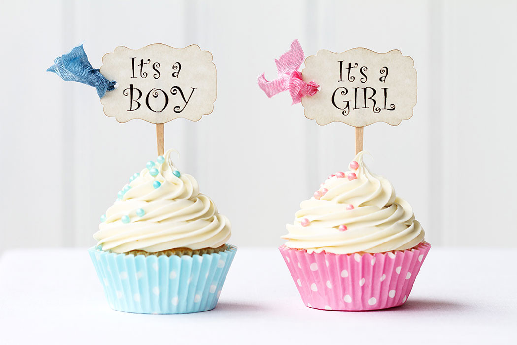 Gender Release Party Ideas  5 Cute Gender Reveal Party Ideas