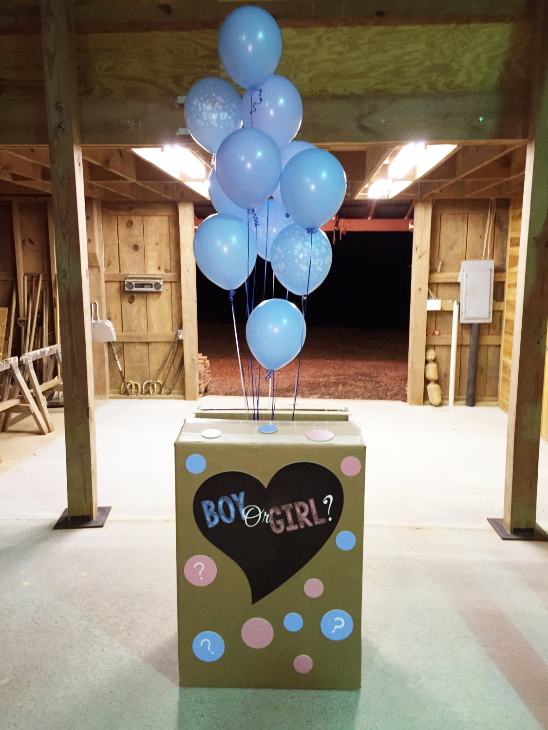 Gender Reveal Party Ideas Balloons  Gender Reveal Party Balloon Box Decorations