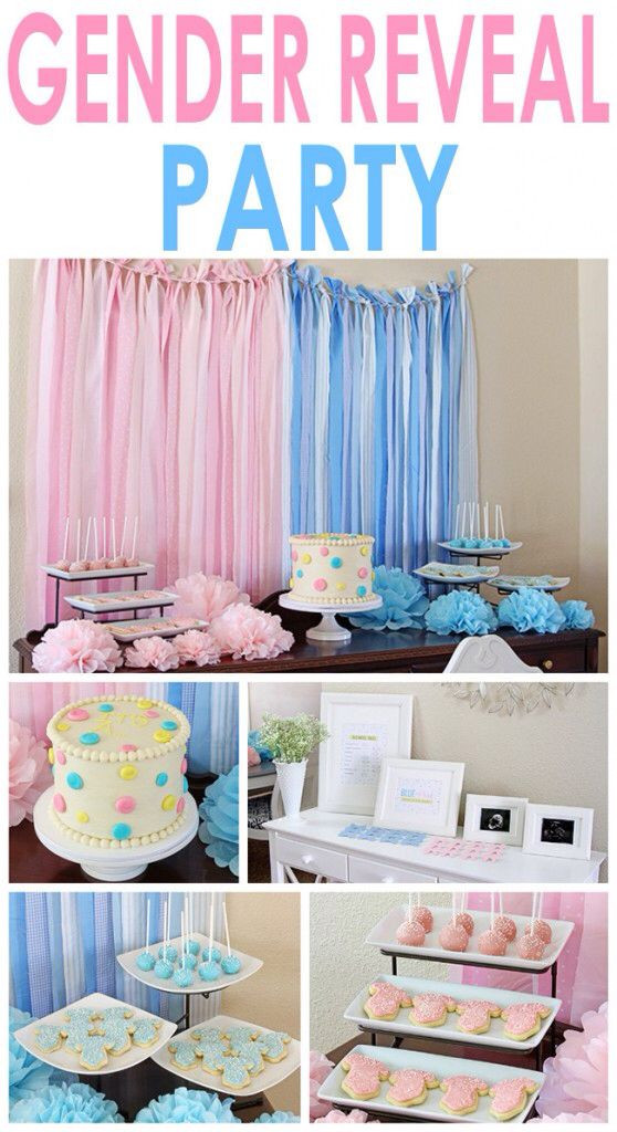 Gender Reveal Party Ideas Party City  Best 20 Party City Gender Reveal Ideas Home DIY Projects
