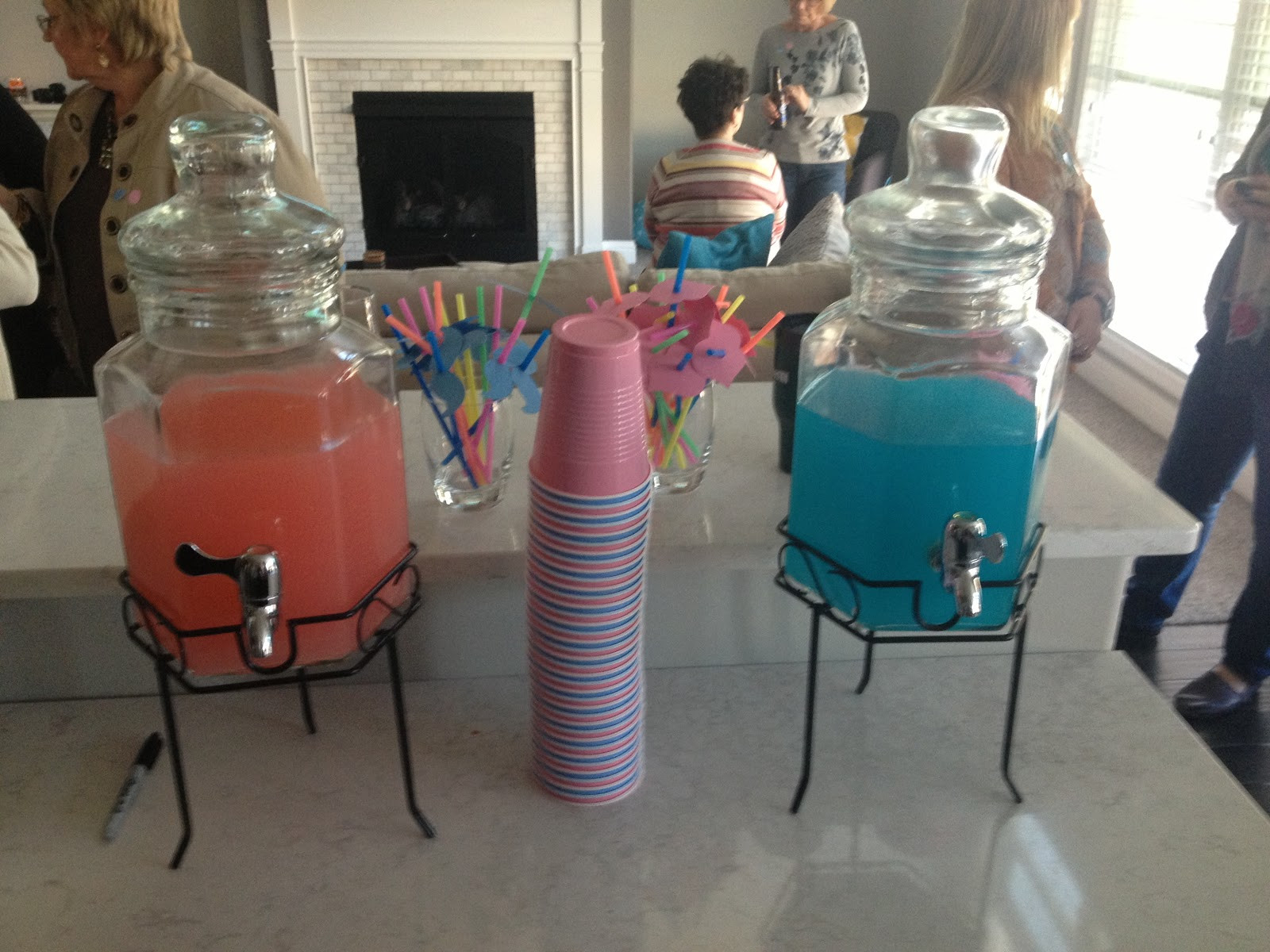 Gender Reveal Party Ideas Twins  Recently Rimini Our Gender Reveal Party for the Twins