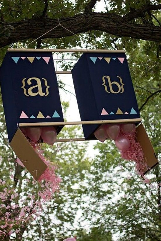 Gender Reveal Party Ideas Twins  The Best Ideas for Twins Gender Reveal Party Ideas – Home
