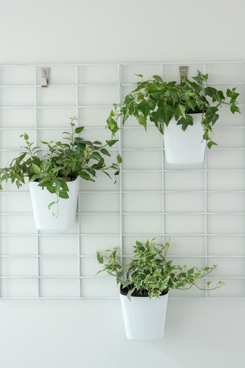 Indoor Living Wall Planter  23 Cool DIY Wall Planter Ideas For Vertical Gardens – The