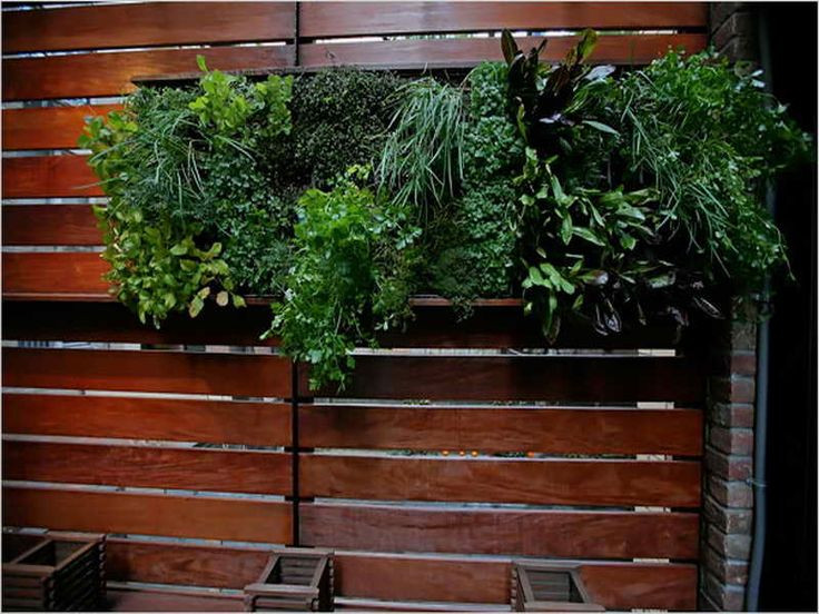 Indoor Living Wall Planter  24 Best images about Indoor Living Wall Planters Ideas on