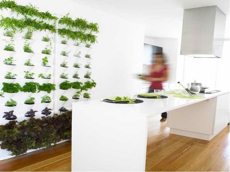 Indoor Living Wall Planter  24 best Indoor Living Wall Planters Ideas images on