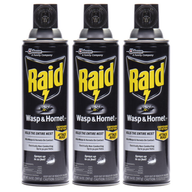 Johnson'S Backyard Garden  SC Johnson s Raid Wasp and Hornet killer Spray for Bugs 14