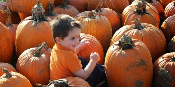 Kids Birthday Party Places In Northwest Indiana  Pumpkin Patches Great Fall Fun With images