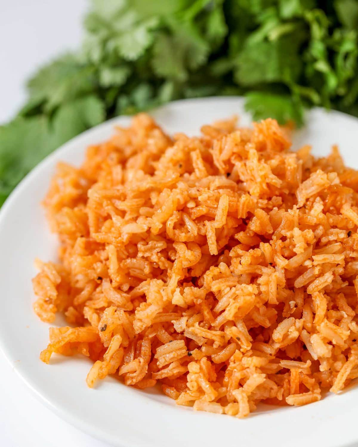 Making Mexican Rice  Restaurant Style Spanish Rice Recipe Mexican Rice VIDEO