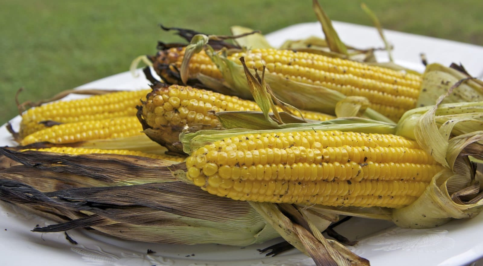 Microwave Corn On The Cob In Husk  Easy Grilled Corn The Cob Recipe