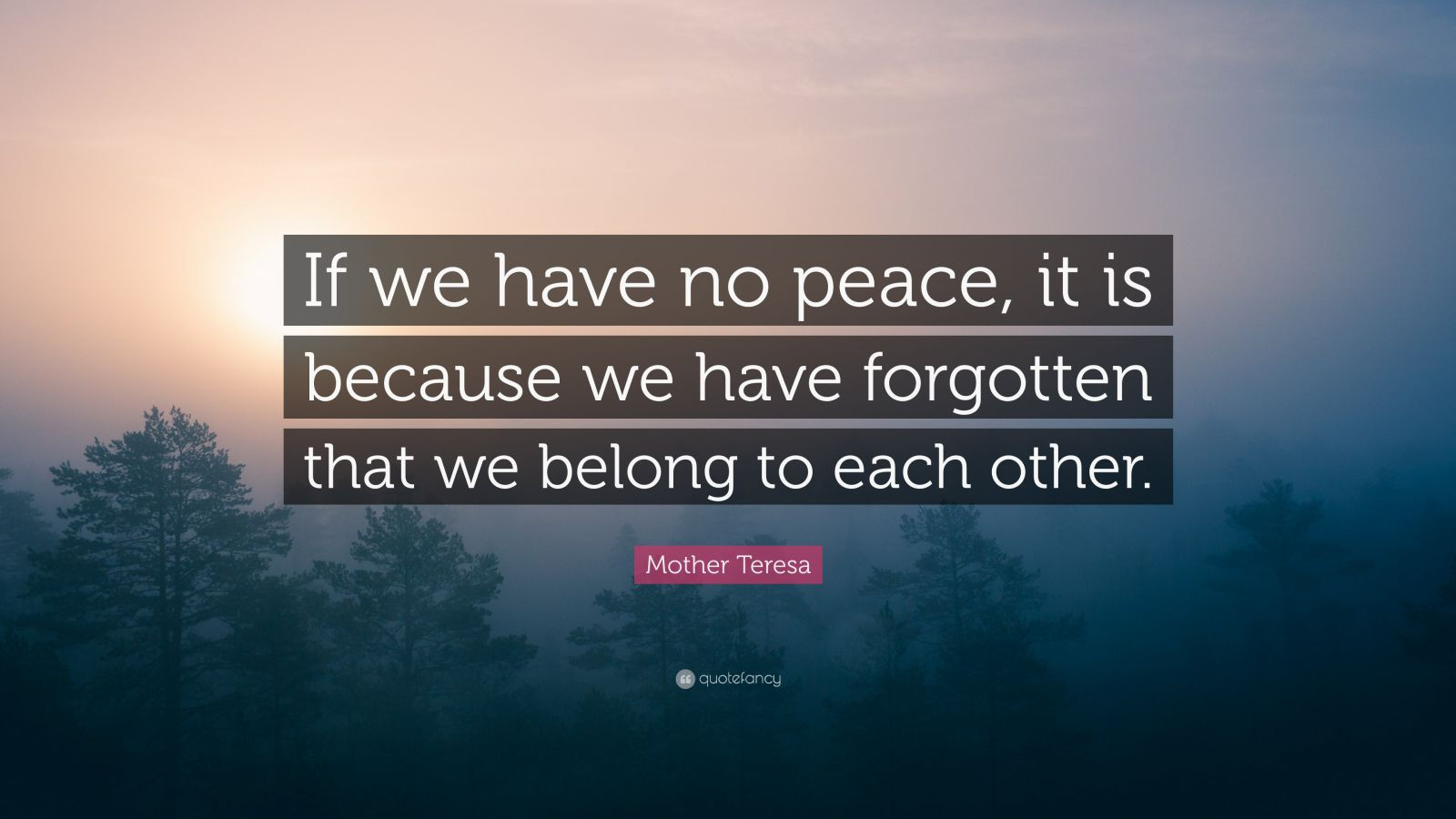 "Mother Teresa Peace Quote  Mother Teresa Quote ""If we have no peace it is because"