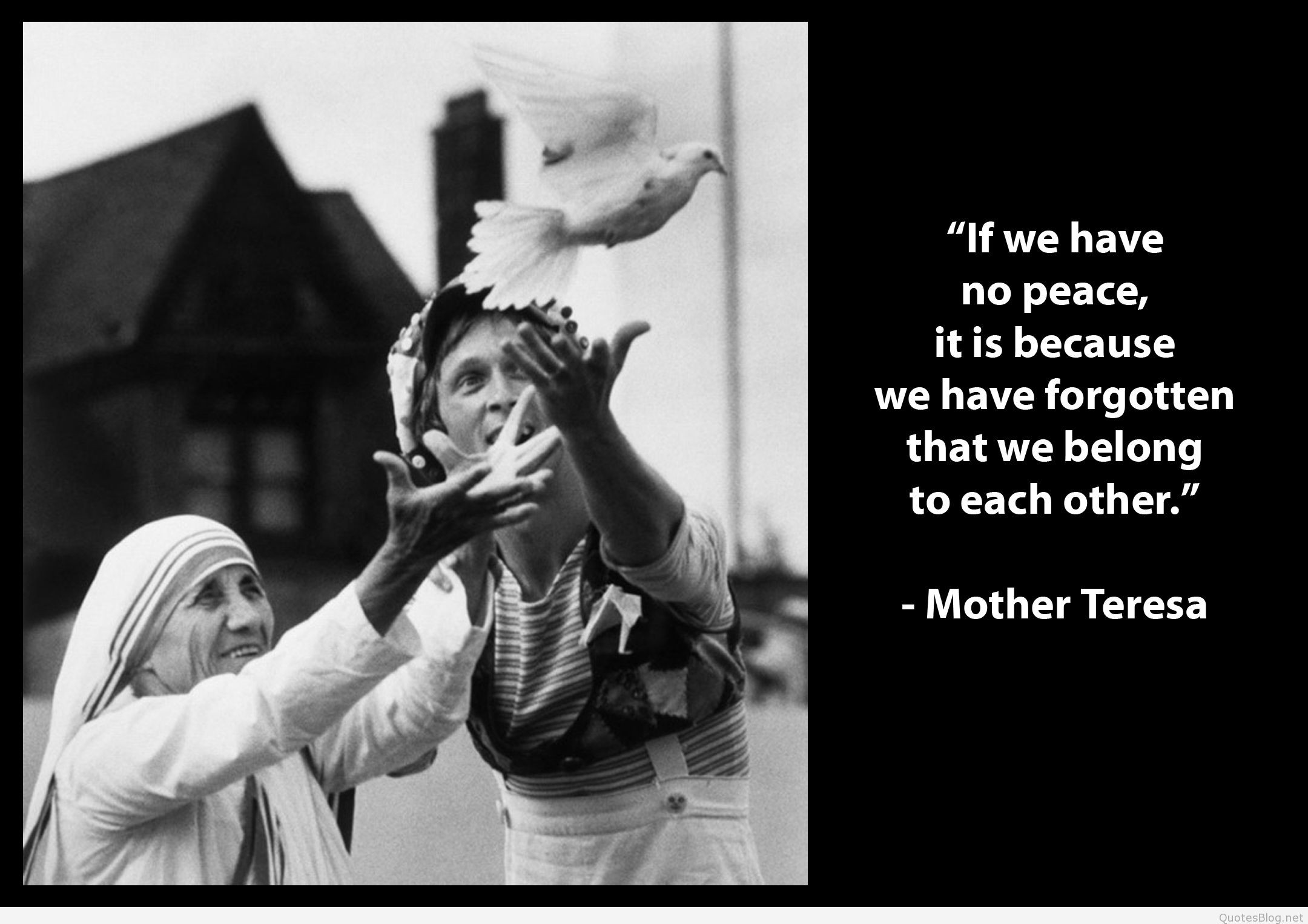 Mother Teresa Peace Quote  Mother Theresa Brainy Quotes and sayings