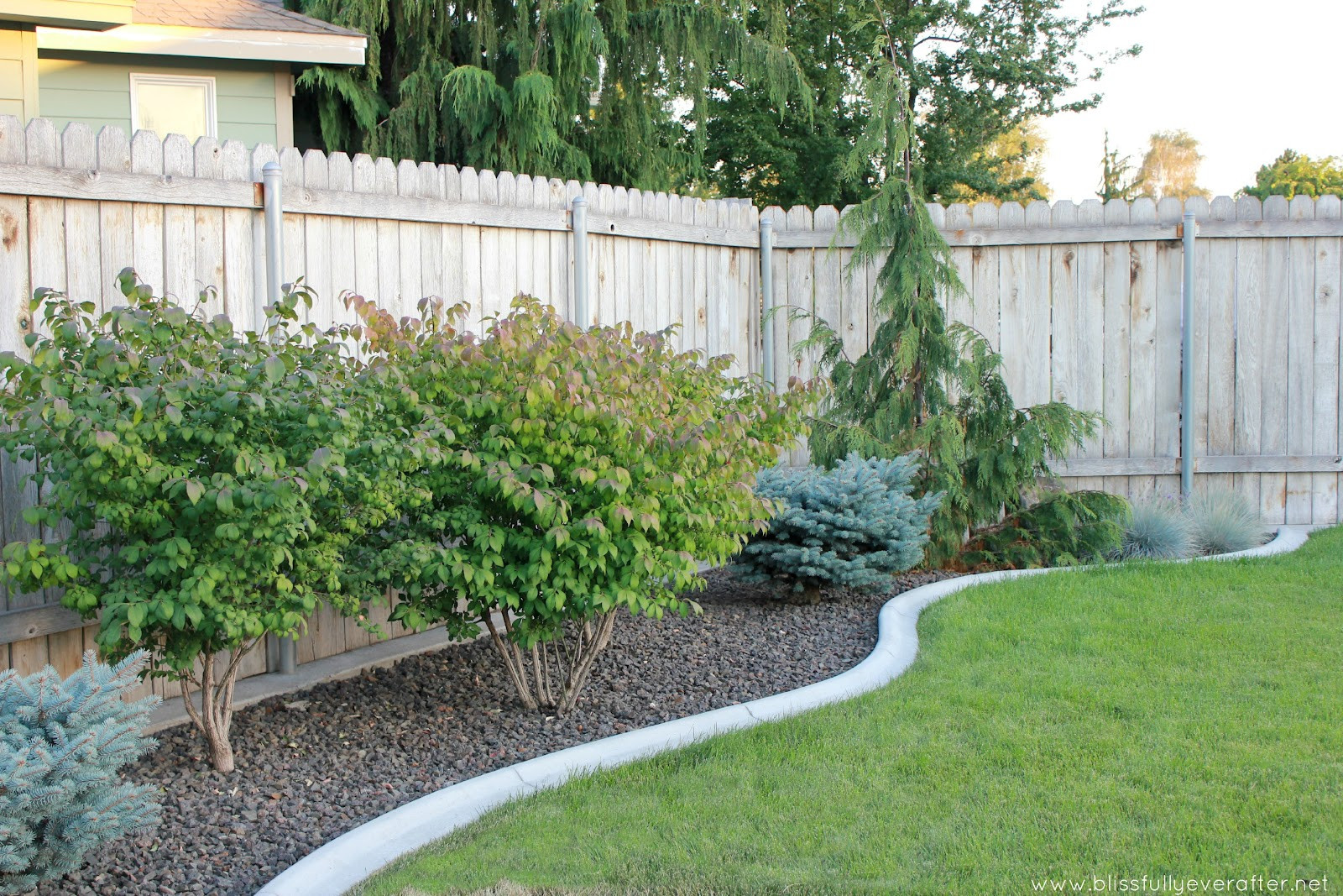 Outdoor Landscape On A Budget  Backyard makeover ideas on a bud