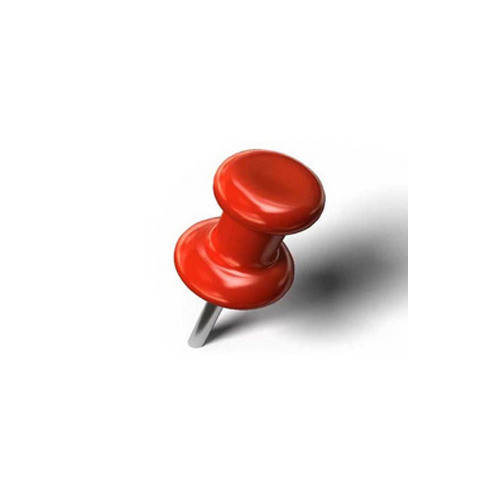 Paper Pins  Paper Pin Push Pin Manufacturer from Delhi