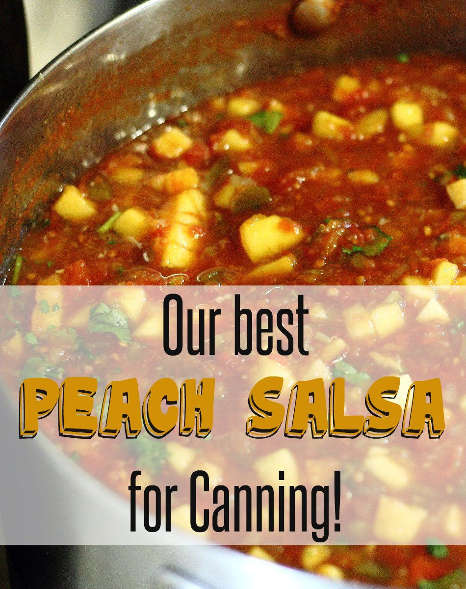 Peach Salsa Recipe For Canning  Canning Recipe