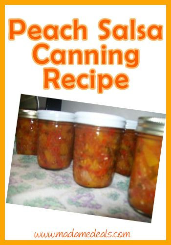 Peach Salsa Recipe For Canning  Canning Recipe for Peach Salsa