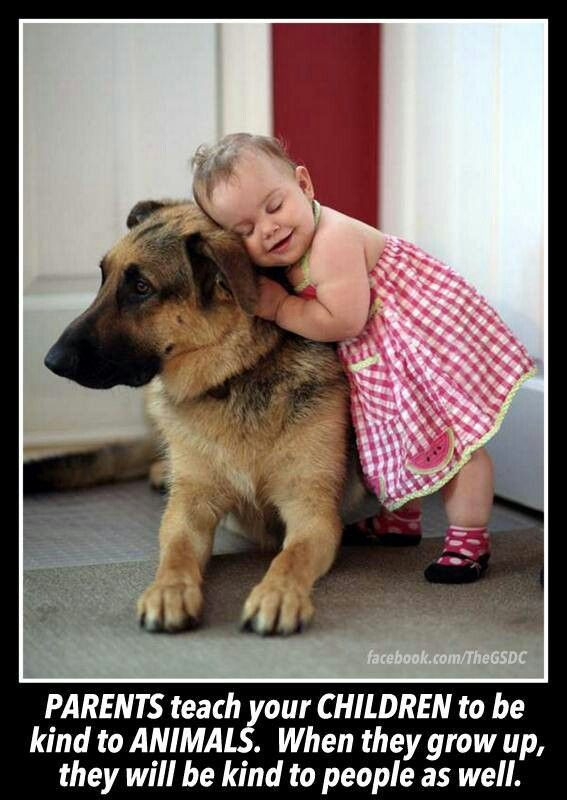 Quotes About Dogs And Kids  29 best Dogs Quotes images on Pinterest