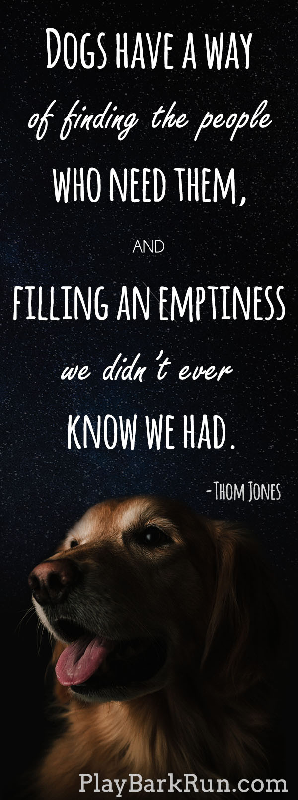 Quotes About Dogs And Kids  28 Inspirational Dog Quotes about Life and Love