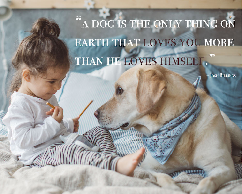 Quotes About Dogs And Kids  80 Dog Quotes Captions and Messages