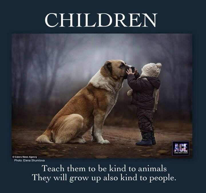 Quotes About Dogs And Kids  Children Dog Quotes