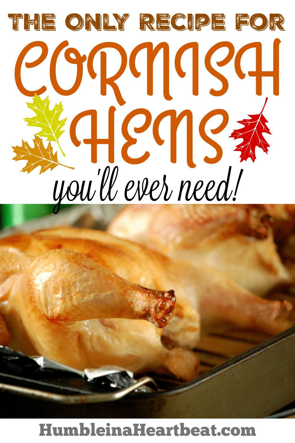 Recipe For Cornish Game Hens  The BEST Cornish Hens Recipe The ly Recipe You Will