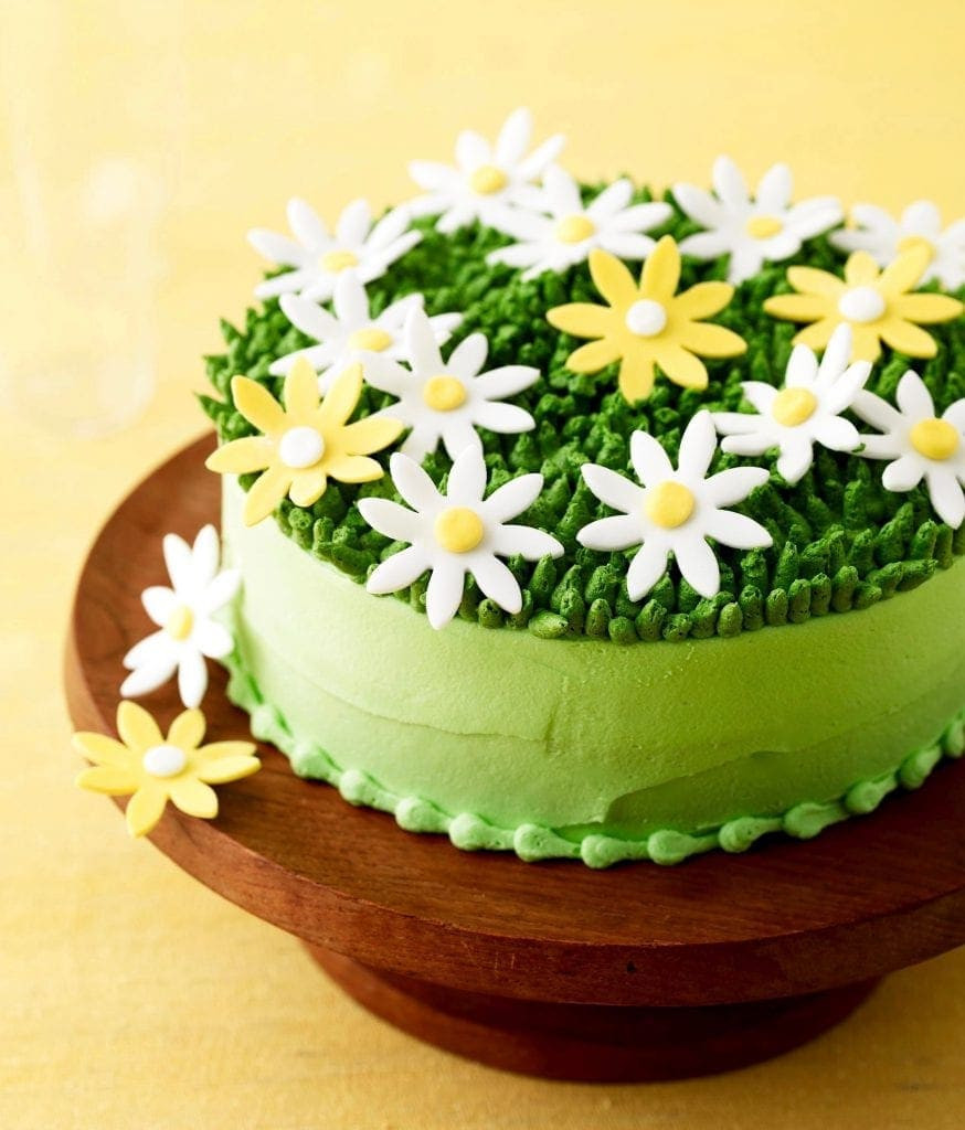 Spring Cake Recipes  Absolutely Perfect Spring Daisy Cake • Best Cakes