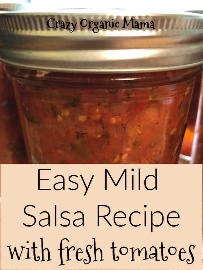 Sweet Salsa Recipe For Canning  Easy Mild Salsa Recipe
