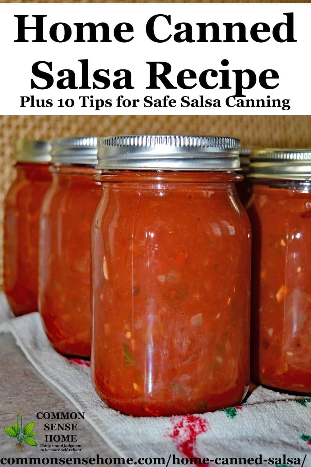 Sweet Salsa Recipe For Canning  Home Canned Salsa Recipe Plus 10 Tips for Canning Salsa