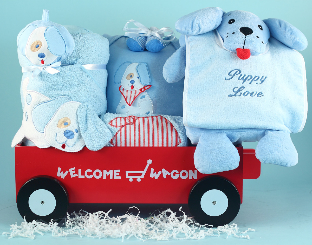 Welcome Baby Gift Ideas  5 Best Baby Boy Gifts News from Silly Phillie